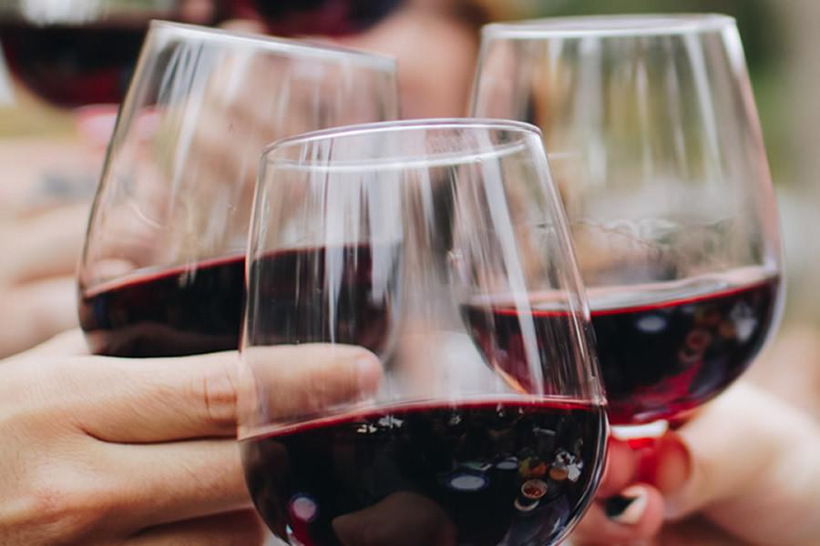 Els nostres vins | Restaurant Forat 19